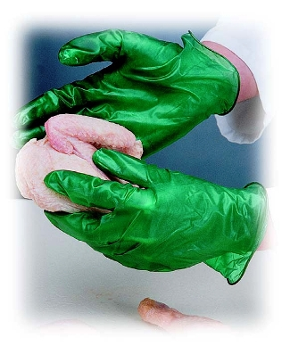 Disposable Vinyl Gloves - 5 & 6 Mil. Food Service & Processing Gloves